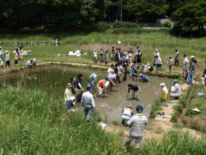 Tokyo Infrastructure 059 Nogawa River Nature Restoration Project